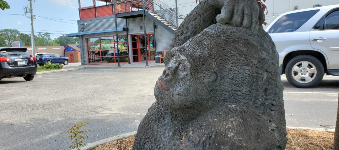 Cogans Gorilla